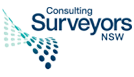 logo surveyors